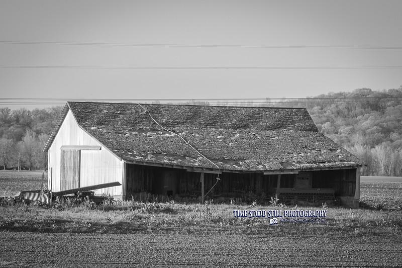 KC Landscape-60.jpg