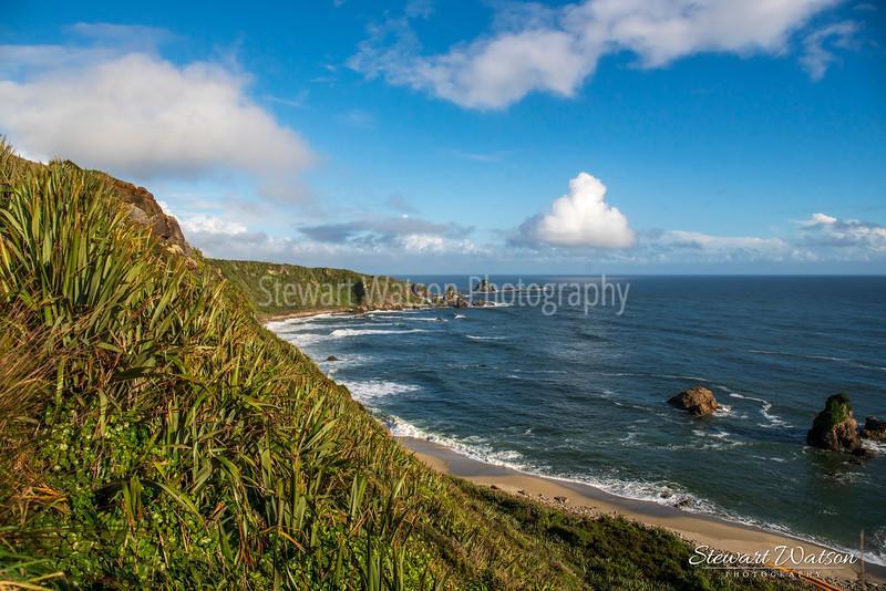 Cape Foulwind coastal lighthouse walk 07