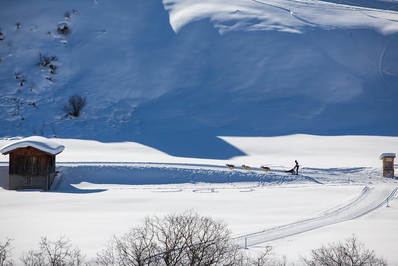 Rheinwald-Winter-D-Aebli-004.jpg
