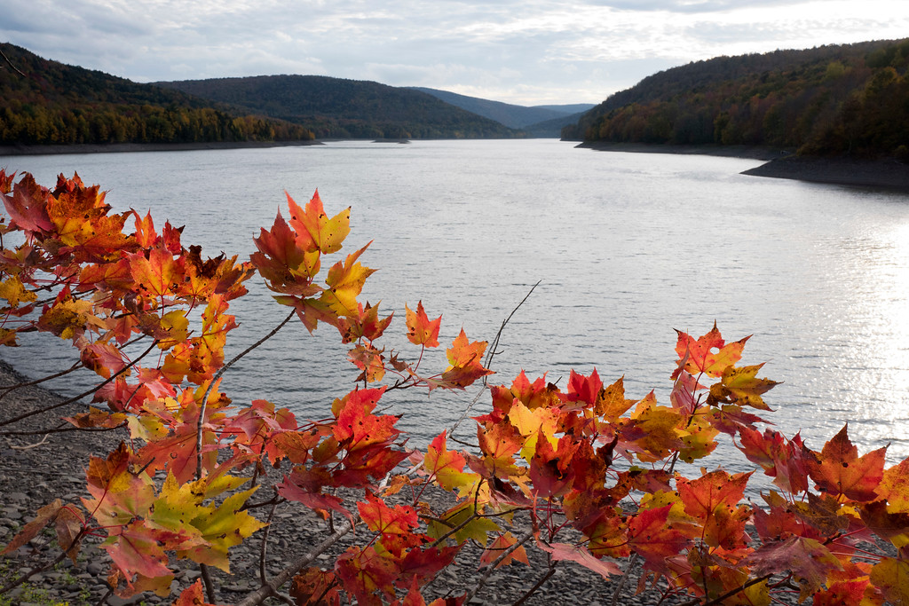 . Fall foliage lines the shore of the Pepacton Reservoir, Saturday, Oct. 7, 2017 near Andes, N.Y. The reservoir is part of New York City\'s water supply and is controlled by the NYC Department of Environmental Protection. (AP Photo/Mark Lennihan)