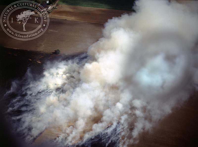 S. Sandby, burning of straw (1990) | PH.0099