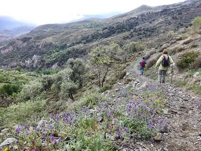 Walking Week Alpujarras & Granada