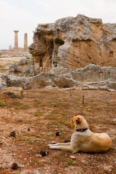 Greece-4-2-08-32785.jpg