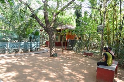 Chennai Snake Park - Guindy Snake Park