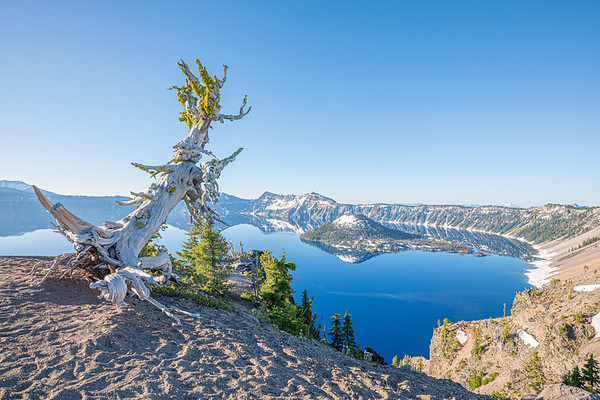 Crater Lake National Park - Morning