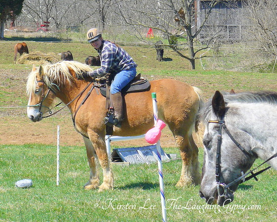 Sylvan Glen Equestrian SCA Authorizations