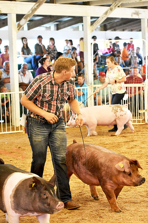 Swine Showmanship 8-7-2018
