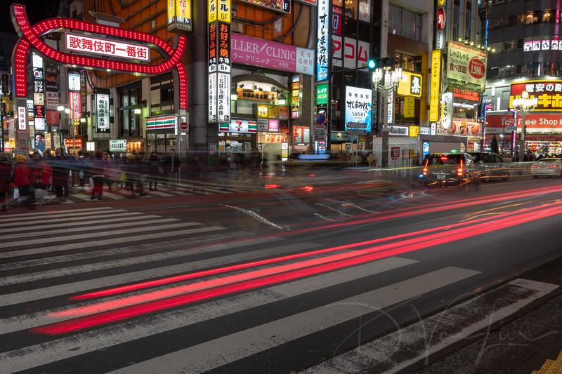JapanPhotoTour20190204-31.jpg