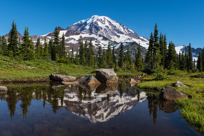 Mt. Rainier Spray Park Reflections