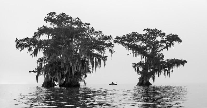 Cypress_Swamps_1117_PSokol-2150-Edit.jpg