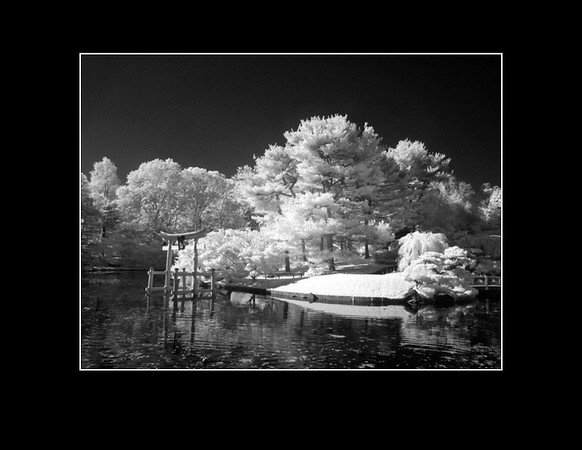 IR Photography