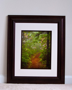 Examples of Framed Images