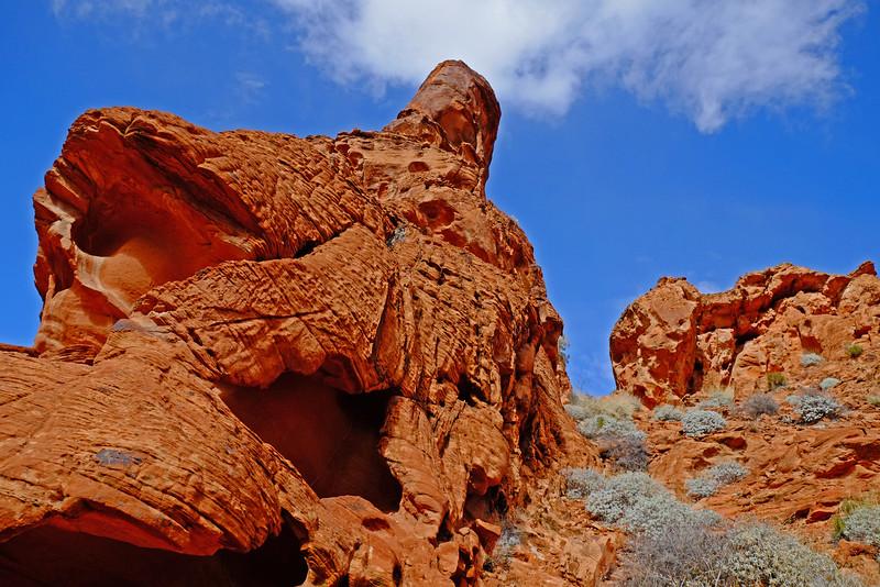 Nevada Las Vegas Red Rock Canyon0018.jpg