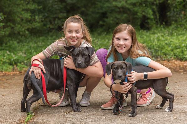 2019.04. 06 Emmylou Dogs