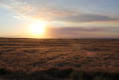 Sunset Danya & Troy