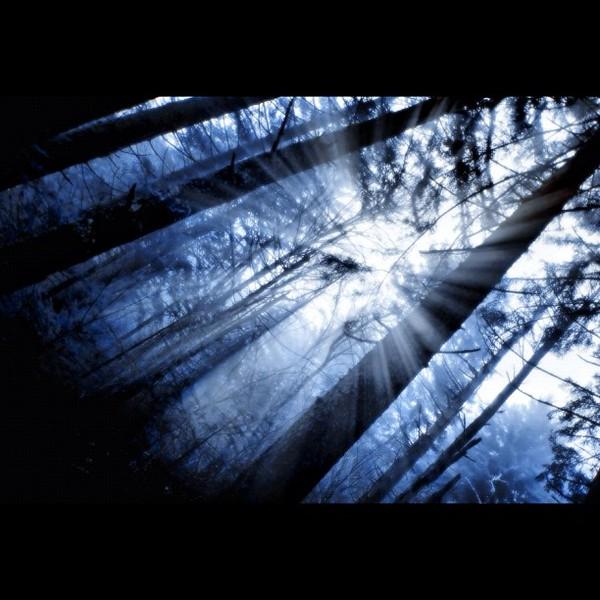 2011-12-06_1323142161.jpg