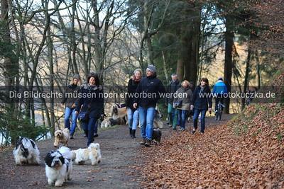 22.11.2014 IGT-Spaziergang Glör