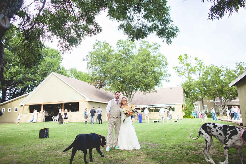 2014 09 14 Waddle Wedding - Bride and Groom-754.jpg