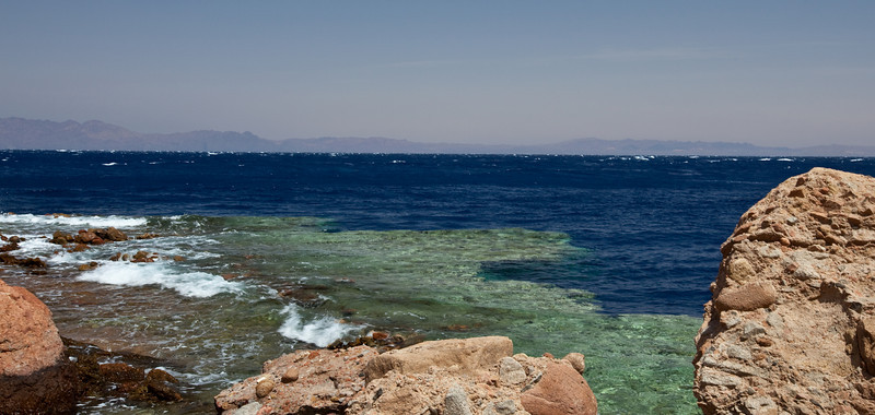 Beautiful untouched coral.  Saudi Arabia in the background.  Dahab, Egypt
