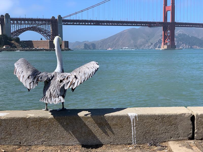 San Francisco 0029.jpg