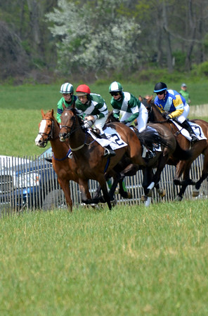 Orange County Hounds Point to Point