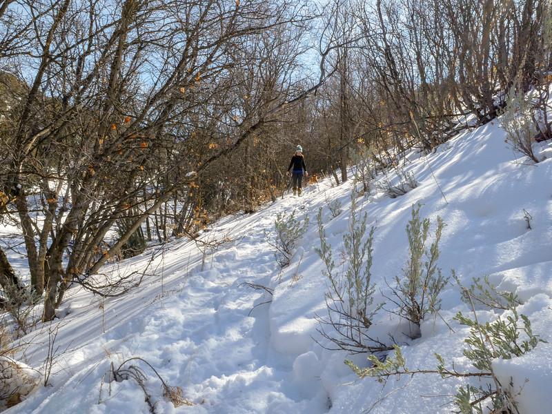 2018 Snowshoeing-26.jpg