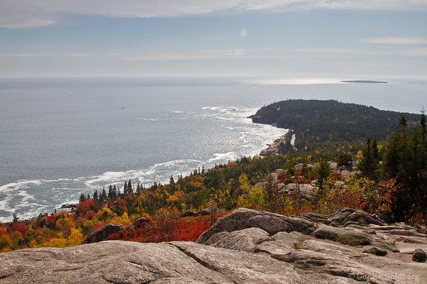 from high on Gorham Mountain, Acadia National Park
