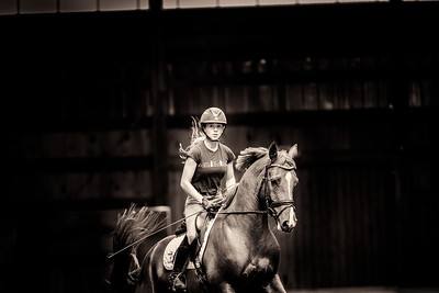 Equine Photography - Dressage horses