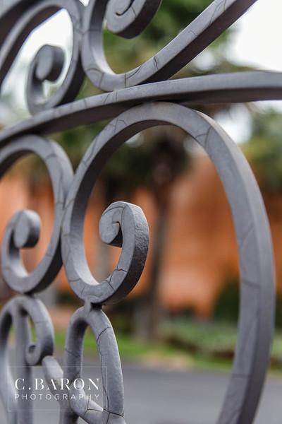 Agave Estates - Tina + Daniel 062815