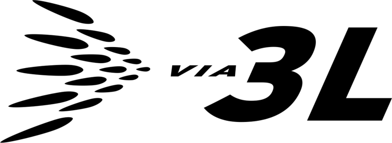 V3L-BLK-RGB.png