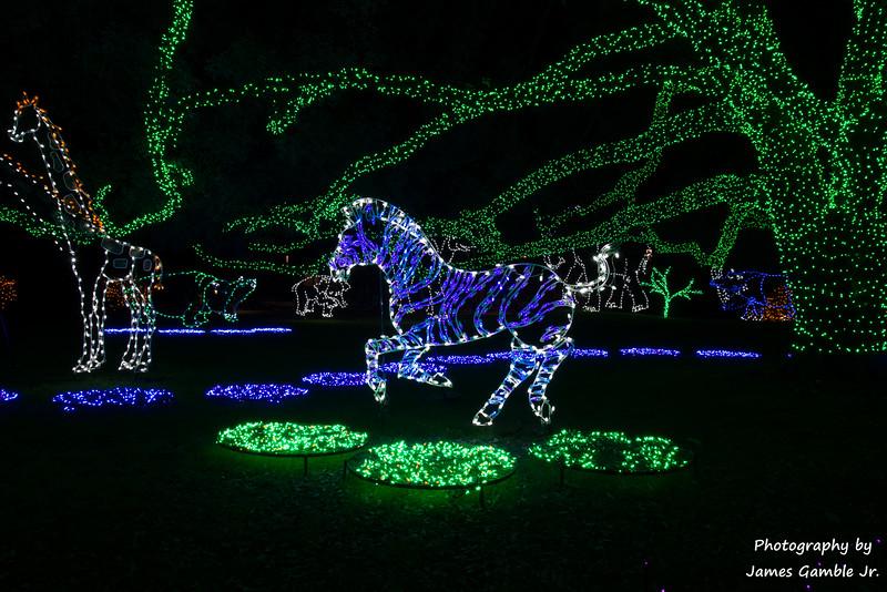 Houston-Zoo-Lights-2906.jpg