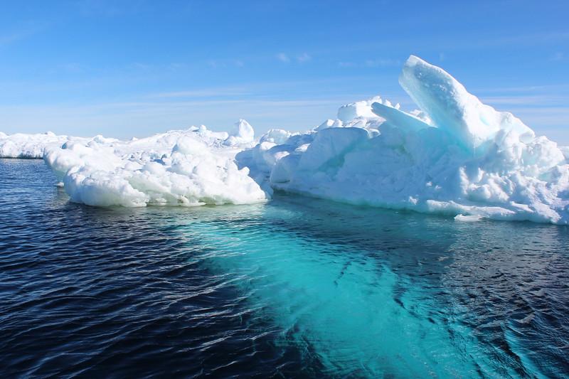 Antarctica 014.JPG