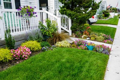 Garden and Yard 8-18-13