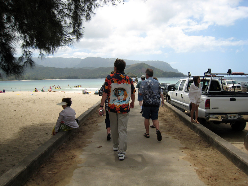 Hanalei Pier - South Pacific
