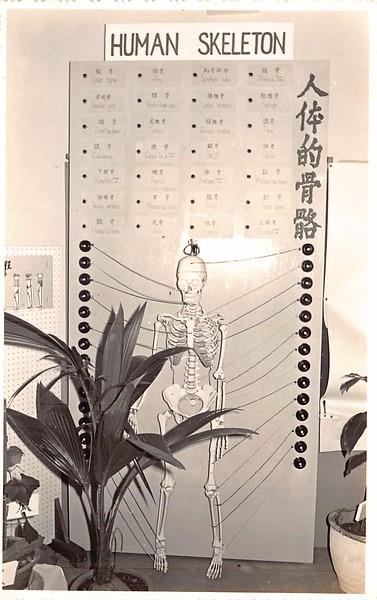 1970s class Exhibition