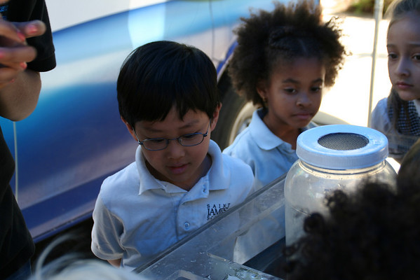 Kindergarten and First Grade Cabrillo Touch Tank