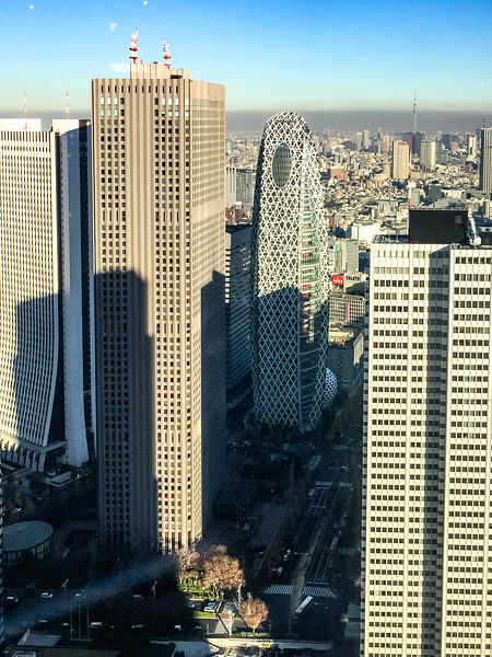 Tokyo12172018_133.jpg