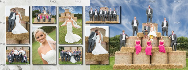 Wedding Album Proofs
