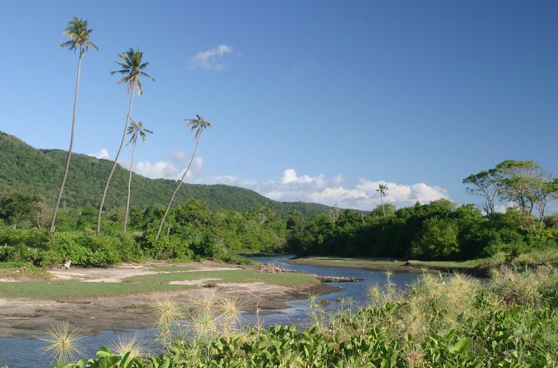 IN519-river.JPG