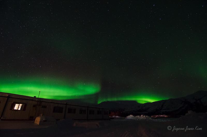 USA-Alaska-Coldfoot-Aurora-3415.jpg