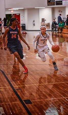 CHS Basketball Girls 2017
