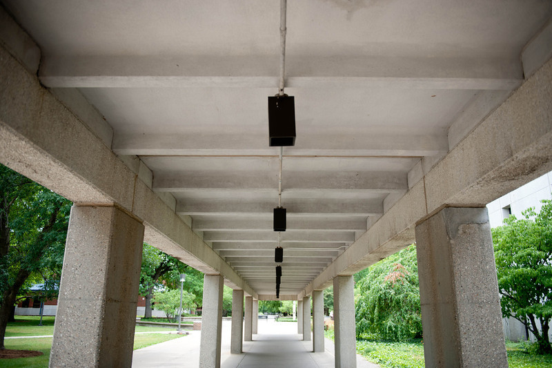 May_30__2012_Campus_Scenes1455.jpg