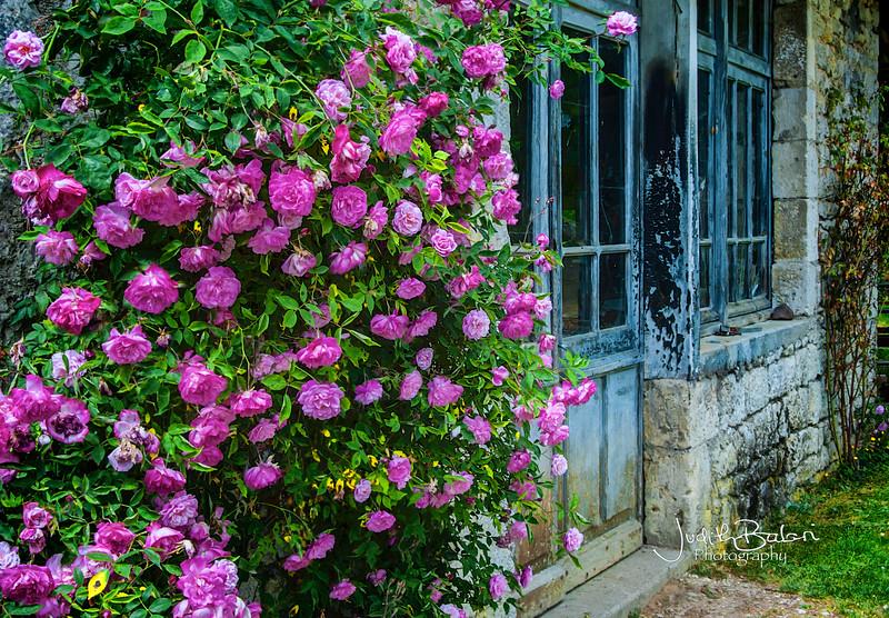 Saint Martin de Vers, France