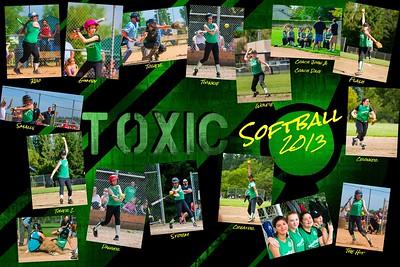 2013 Team Toxic