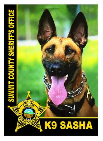 Summit County Sheriff's Office K9 Unit