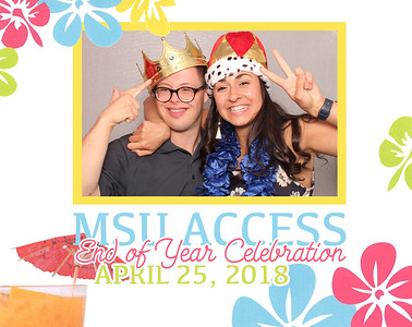 MSU Access End of Year Party 2018