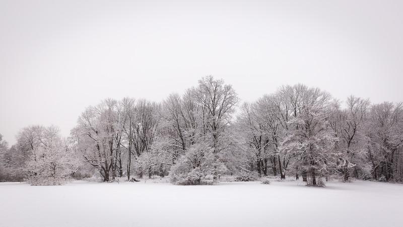 ManeyDigital_Winter Squall-29.jpg