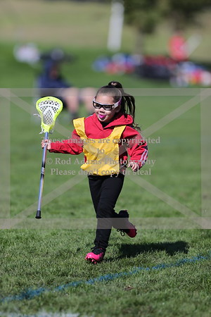 Really Young Lacrosse Players 10/13/2018