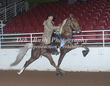 CLASS 73   AMATEUR 3 YR OLD STAKE  A/D