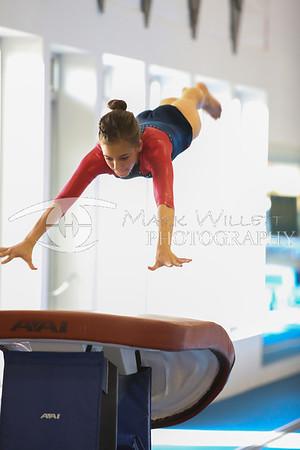 2012-2013 Women's Gymnastics